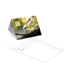 Gift Card Carrier Spa Flowers - 250pk